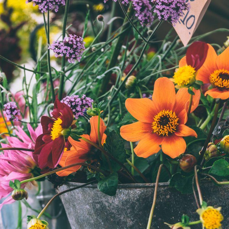 FloraWeb: comodidade na entrega de flores no exterior