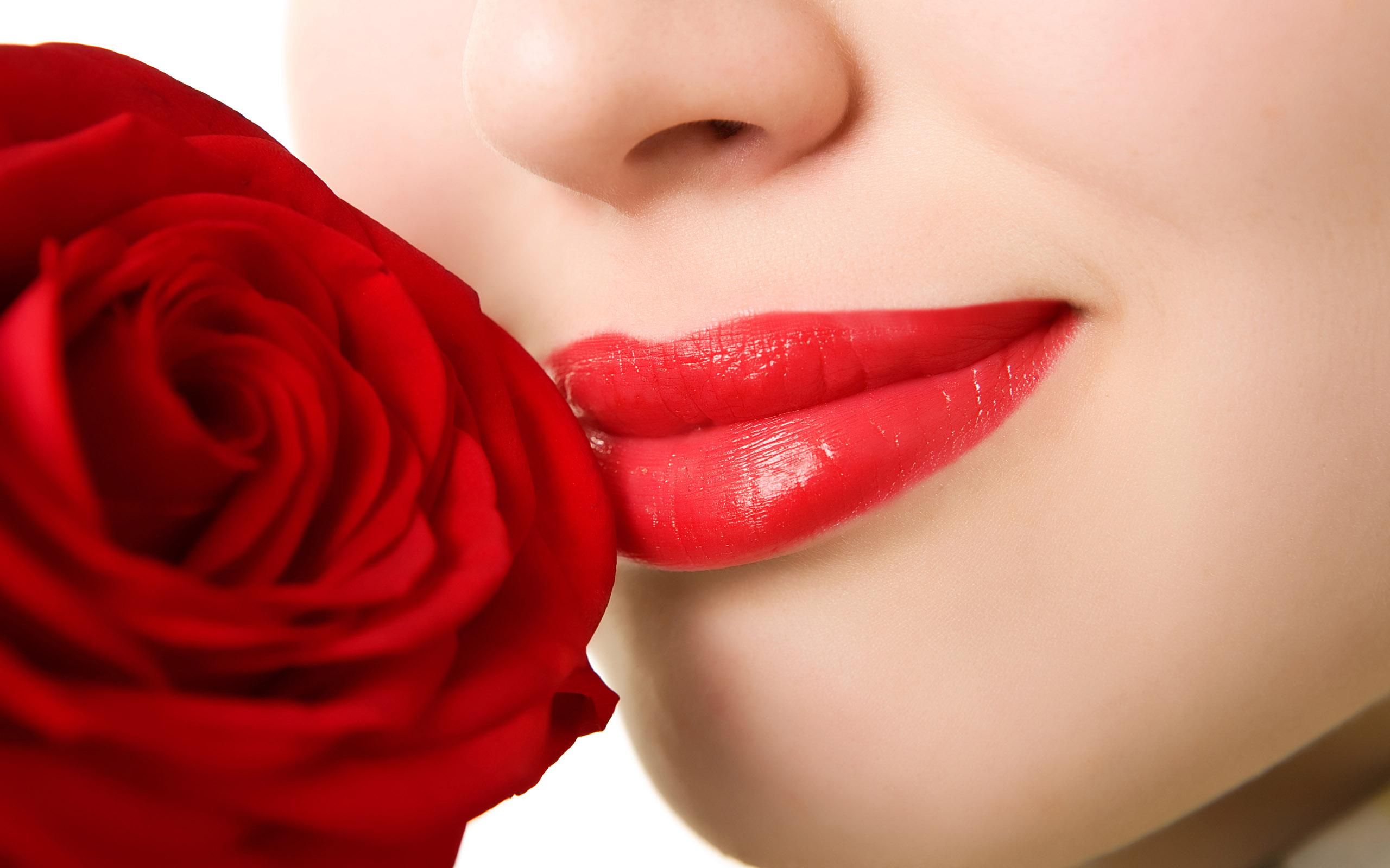 rosas-envio-de-flores-para-fora-do-país-02