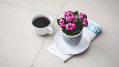 Flores e presentes no ambiente corporativo