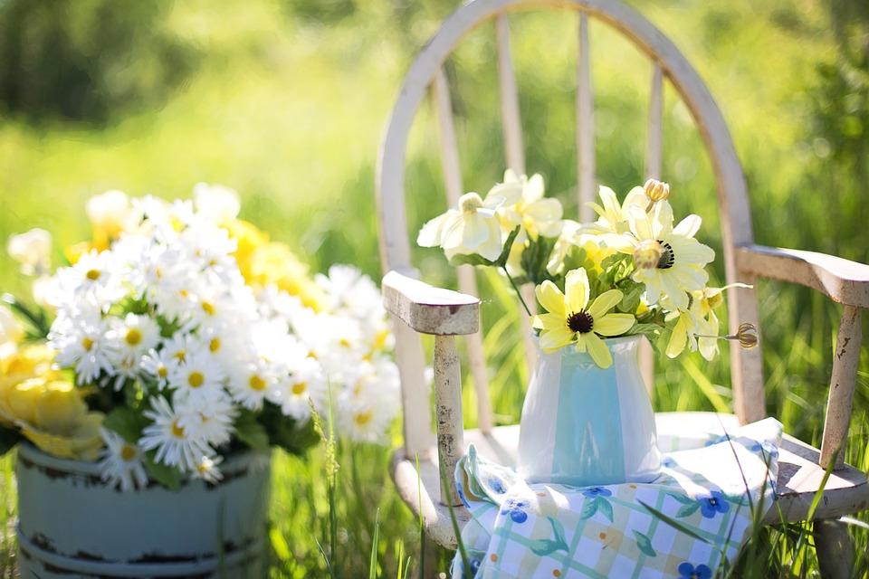 Conheça o significado das flores