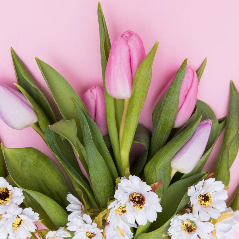 Conheça o significado das flores para esse dia dos namorados