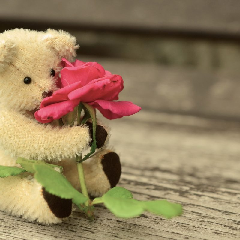 Urso de pelúcia: presente ideal para um relacionamento a distância